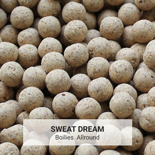 Boilies Allround Sweat Dream